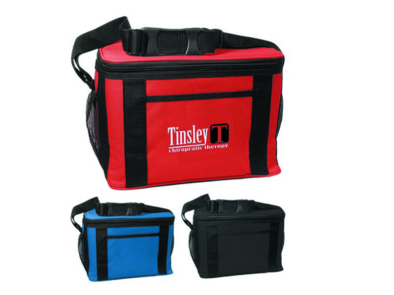 New style cooler bags for promotion