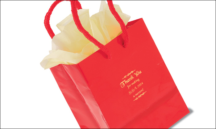 CA Promotion Small Gloss Laminated Gift Bag