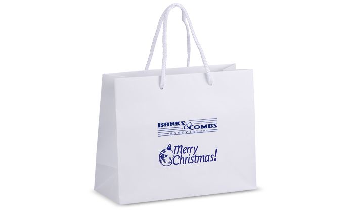 Holiday Merry Christmas Gifts bags