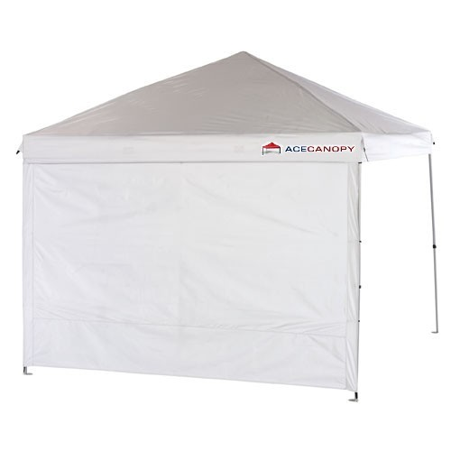10 x 10 pop up canopy