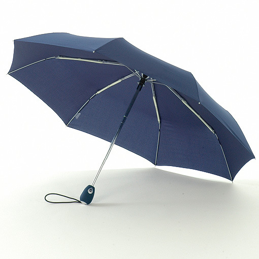 Telescoping pole umbrella