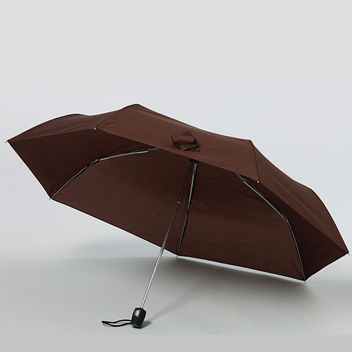 Budget booster auto folding umbrella