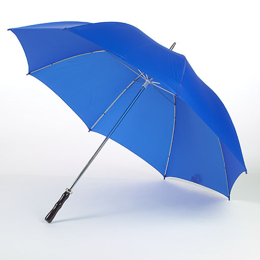 Auto open wood handle umbrella